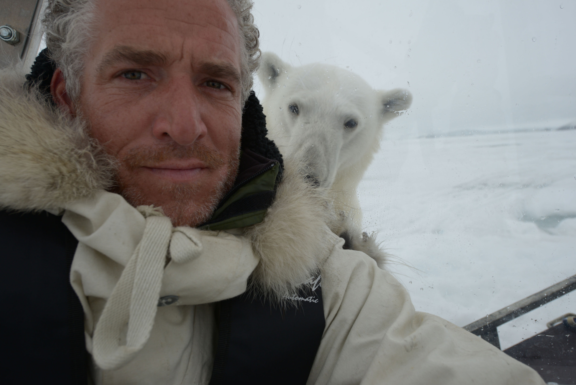 Polar Bear Family & Me