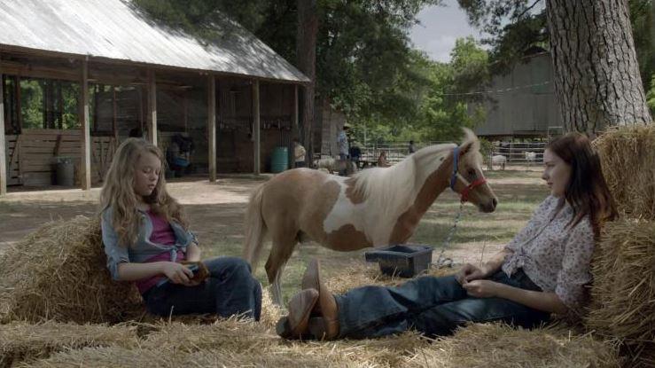 Cowgirls 'n Angels: Dakota's Summer